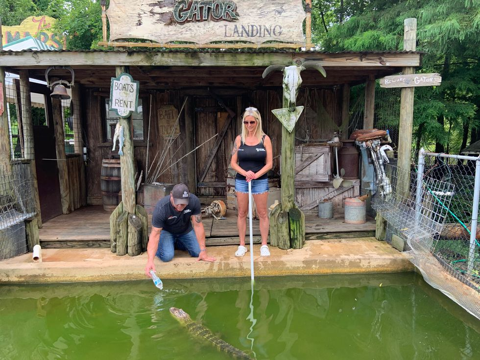 Gary Saurage has a life-long passion for alligators, while Shannon is a venomous snake handler and enthusiast.