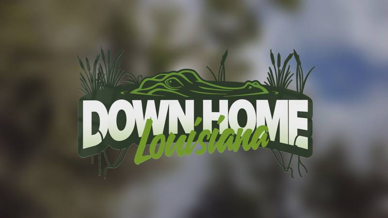 Down Home Louisiana tells the stories behind some of Louisiana's most interesting places and...