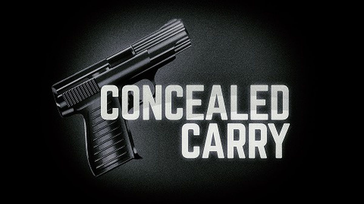 Supporters say the permitting requirements violate their constitutional rights to bear arms.