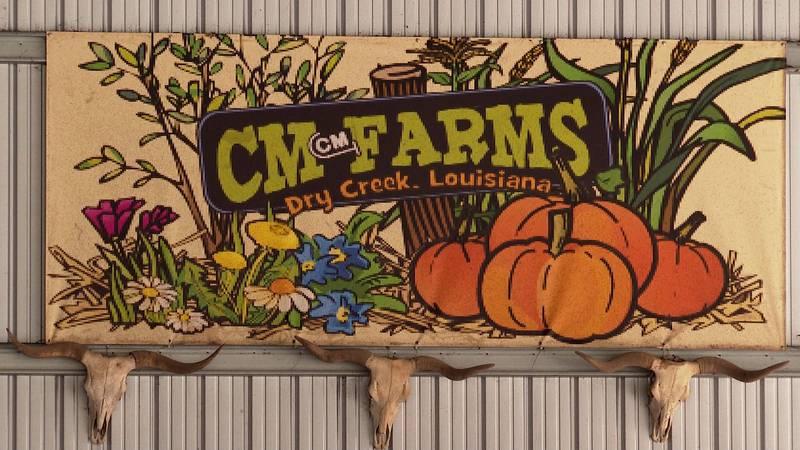 CM Farms in Dry Creek, La.