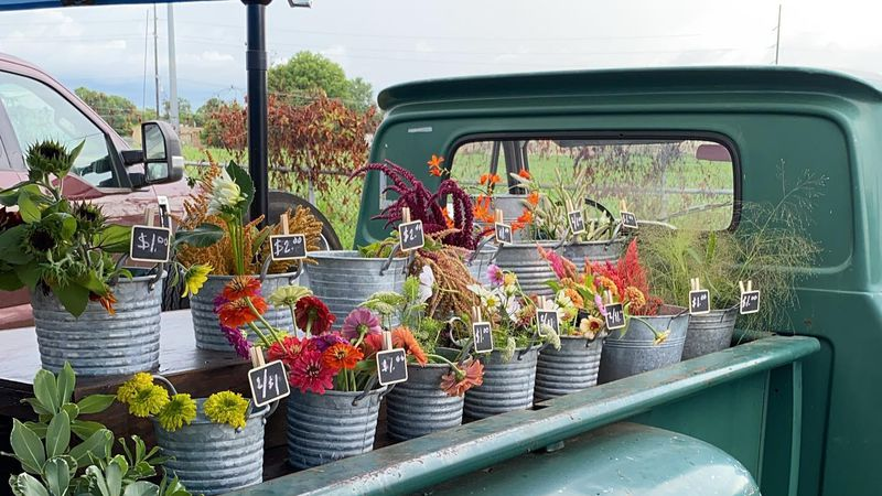 The old '66 Chevy is used to display the homegrown flowers from Bayou Petals Flower Farm.