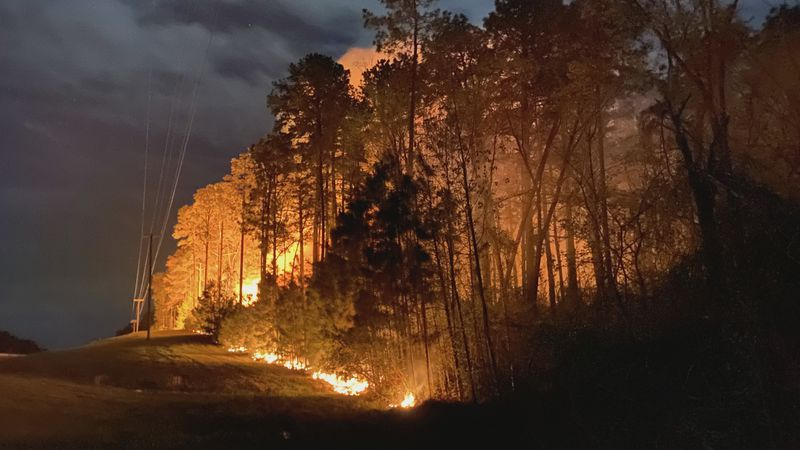 Multiple wildfires have occurred in Grant Parish this month which has caused damage to...