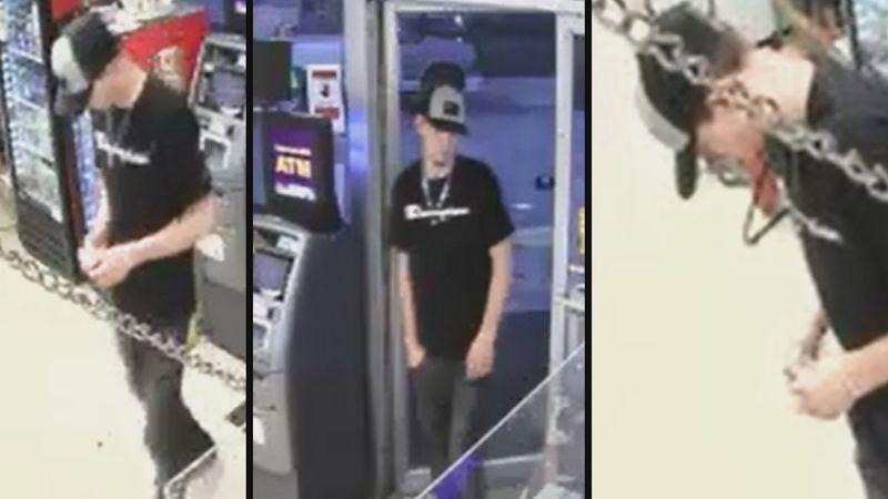 Boyce auto theft suspect
