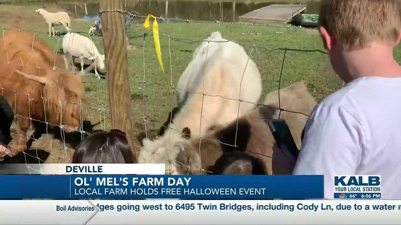 Ol' Mel's Farm in Deville hosted a free fall festival.