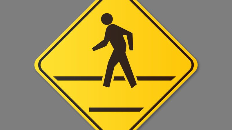 A pedestrian was killed in a fatal crash.