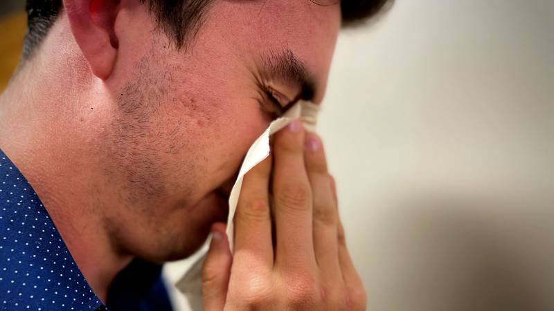 Allergies are awful. Here's how to combat them!