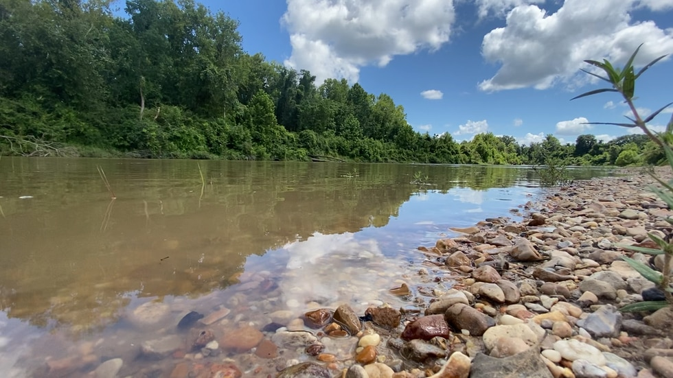 View from the shore of the Amite River.