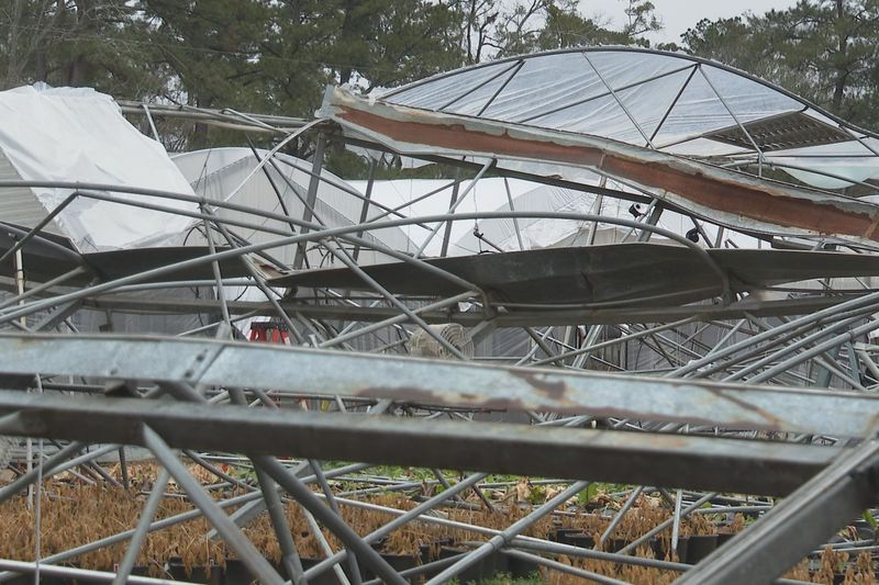 Storm damage to Doug Young Nursery in Forest Hill, La.