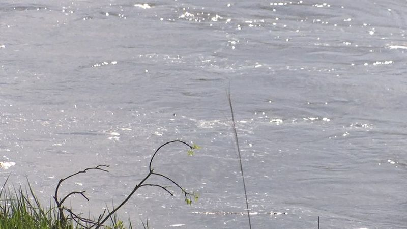 Officials discovered a body washed up from the river in Reserve on Tuesday morning. (Source:...