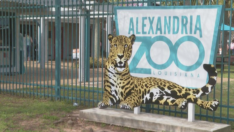After months of being shut down, the Alexandria Zoo officially opened back up to the public on...