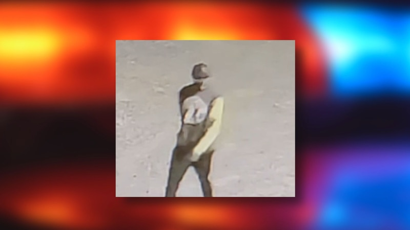 A photo from surveillance footage of the burglary suspect at Foster Construction in Pineville.