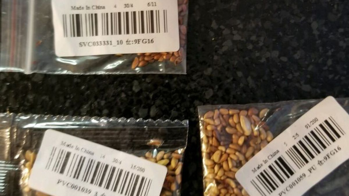 LDAF says these seeds were delivered unsolicited to someone in St. Rose, La.