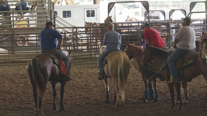Proceeds collected from a rodeo show at the Vernon Parish Fairgrounds will go to St. Jude's...