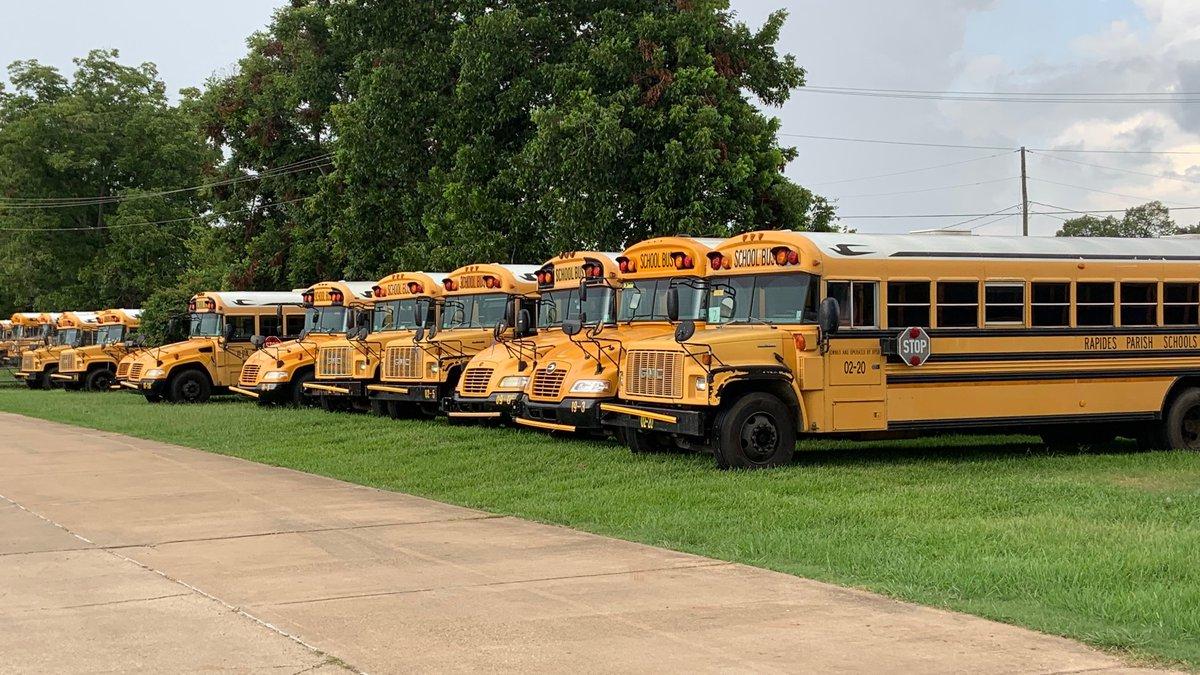 Rapides Parish school buses.